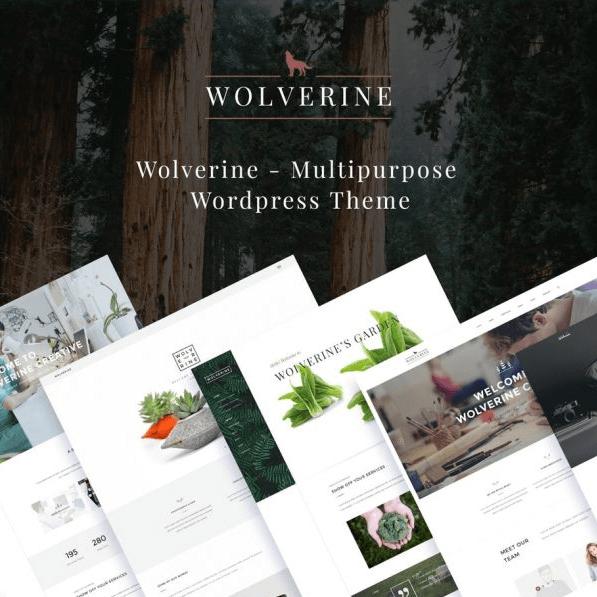 Mẫu website Wolverine
